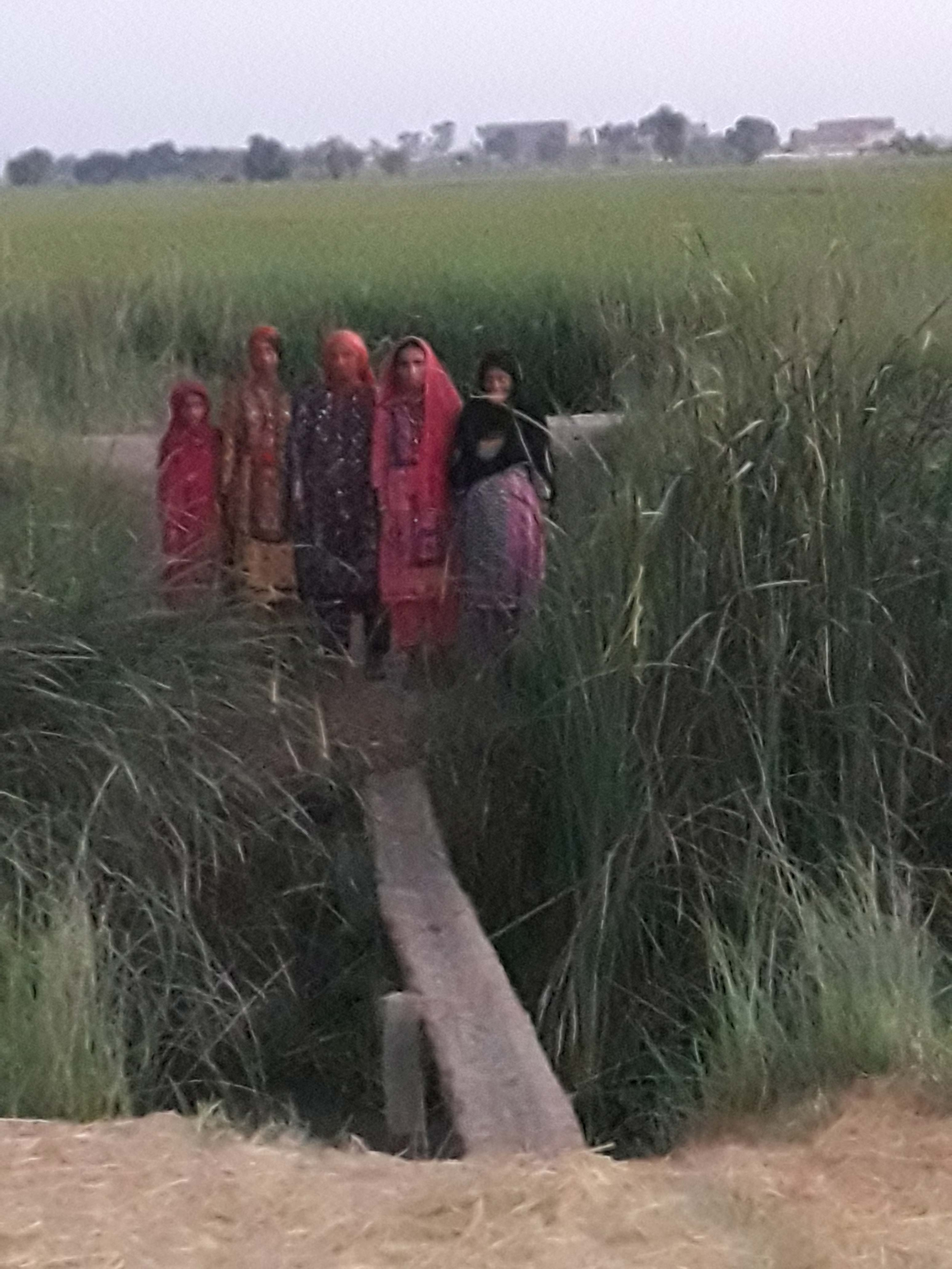 The women of Bhand Village must cross this rickety bridge to get from their homes to the road.