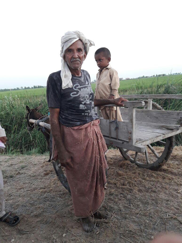 An elderly farmer heads home after a long day