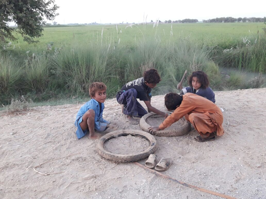 Children play by the roadside near a rice field